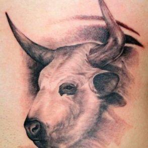 tatuaże byki 78471
